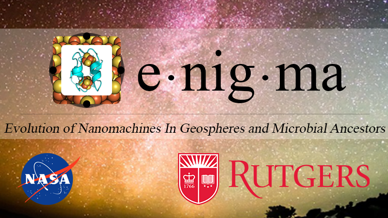 The Enigma research team is focused on answering a single compelling question in astrobiology: How did proteins evolve to become the predominant catalysts of life on Earth?  We seek to understand the origin of catalysis, the evolution of protein structures in microbial ancestors, and the co-evolution of proteins and the geosphere through geologic time.