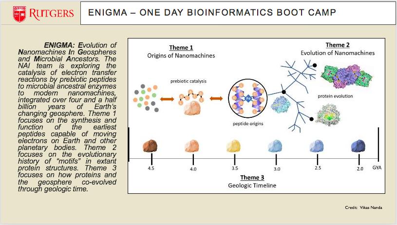 Bioinformatics slide10