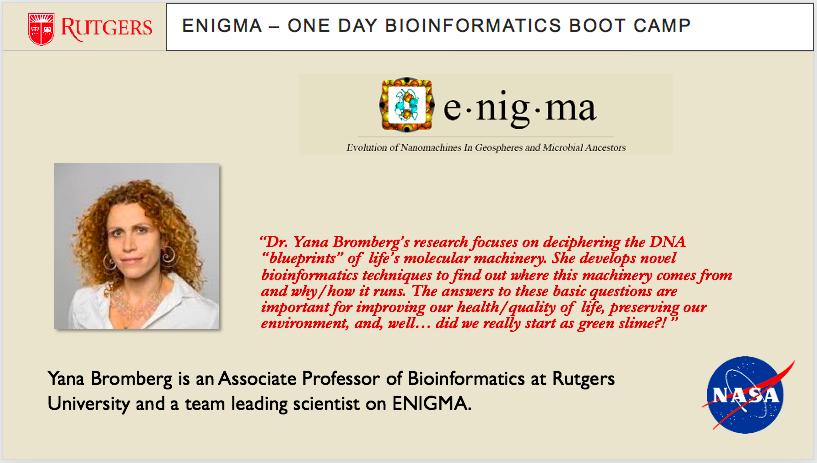 Bioinformatics slide7